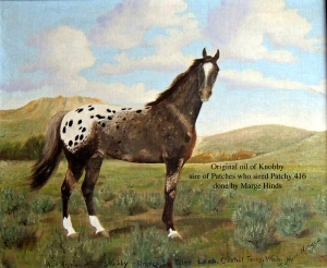 Knobby1831