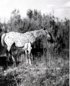 LeopardLady174
